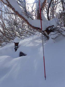 冬の安達太良山登山は地元のガイドにお任せください‼️