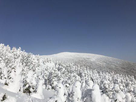 今年の吾妻連峰のスノーモンスターは、これからが見ごろでしょうか‼️